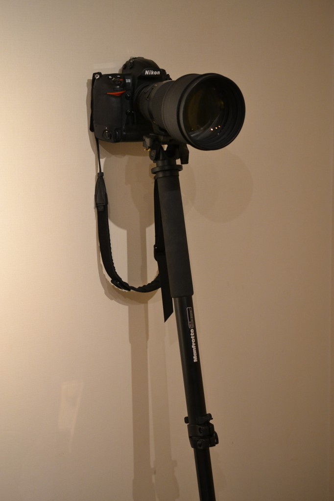 manfrotto 一脚 プロフェッショナル一脚 681B + 一脚ティルトトップ 234 with Nikon D3 + 200mmF2