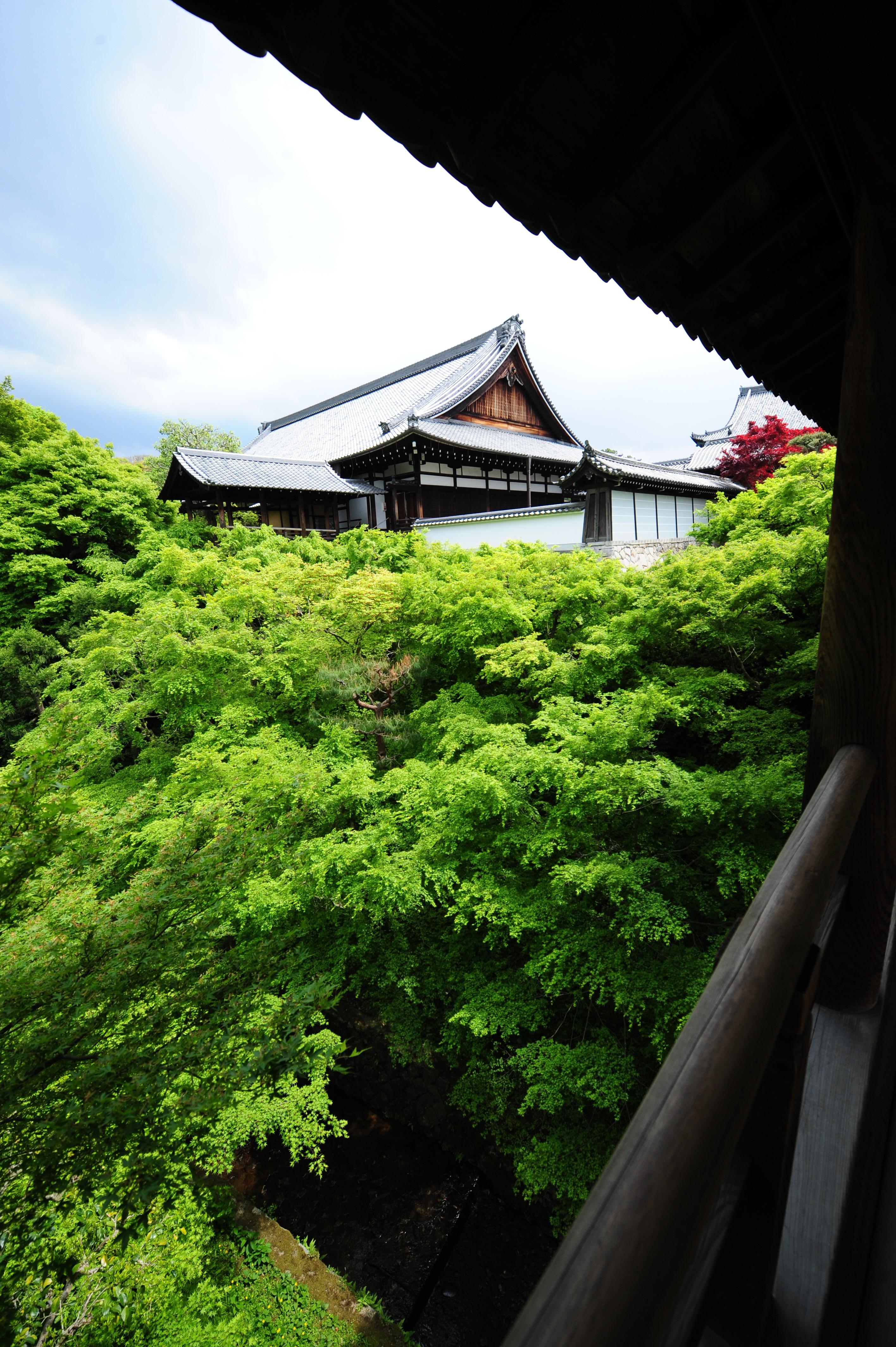Nikon AF-S NIKKOR 14-24mm f/2.8G ED and Nikon D3 with Kyoto Japan